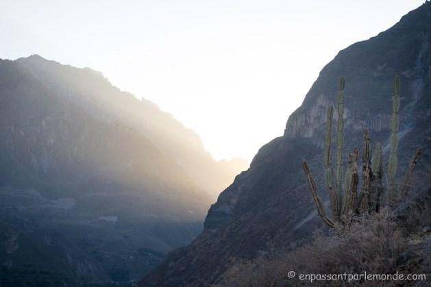 canyon-del-colca-46