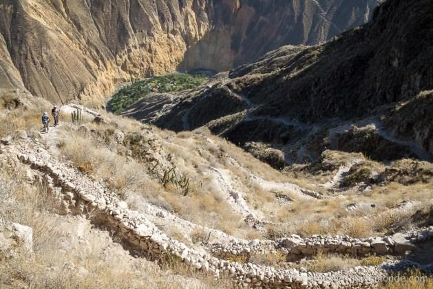 canyon-del-colca-50