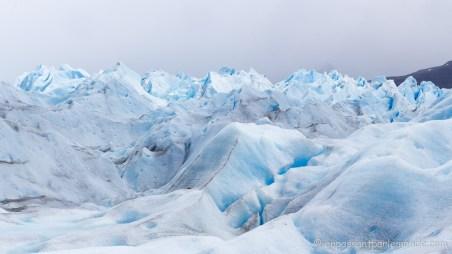 Argentine - Perito Moreno-40