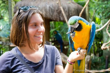 Brésil - Parque das Aves-38