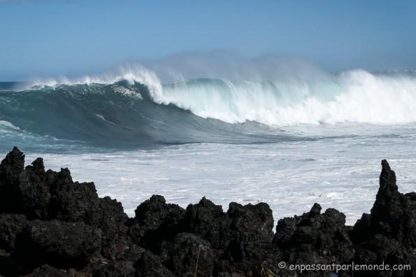 La-Reunion-cote-ocean-12