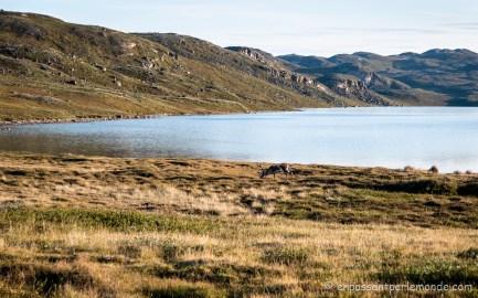 Groenland-ACT-partie-2-J4-23