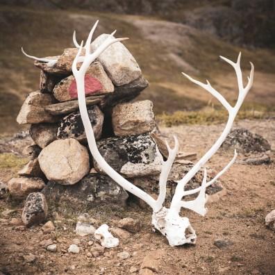 Arctic Circle Trail - partie 3