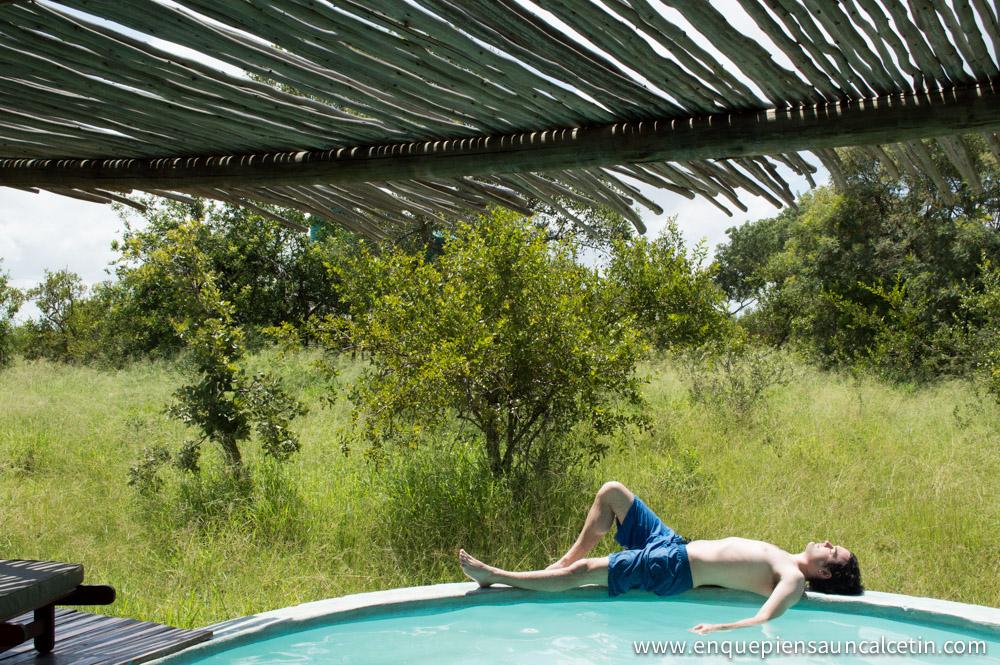 piscina safari kruger