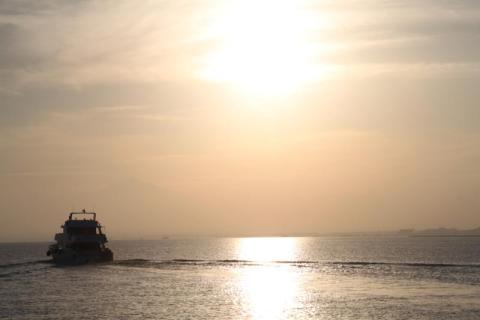 Mar Rojo. Egipto. foto martinez enredando
