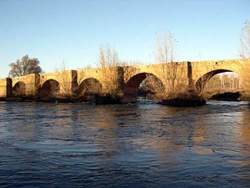 puente-castrogonzalo_jpg_336793437
