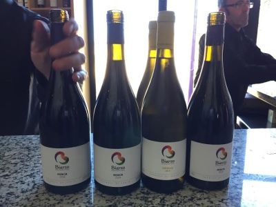 consejo regulador vinos del bierzo