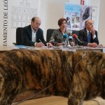 exposicion canina internacional