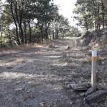balizado de la ruta del Cervantes Sanabrés