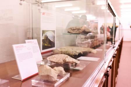 sala de las Tortugas en la Facultad de Ciencias USAL
