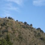 castillo de falamosa