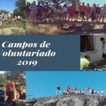 campos voluntariado 2019