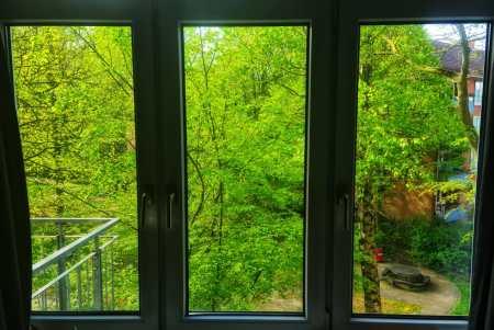 Las ventanas de una cuarentena. Hamburgo