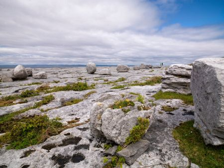 Parque Geológico irlandés Burren
