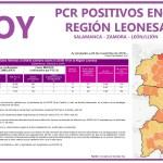 PCR 21 NOVIEMBRE REGIÓN LEONESA SALAMANCA, ZAMORA Y LEÓN