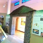 museo de los castros rabanales de aliste