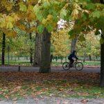 La Comunidad de Madrid celebra el décimo aniversario de las Rutas Verdes