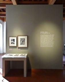 De Clergue à Picasso - Musée Réattu, 2014 - Vue de l'exposition