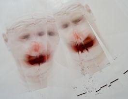 Roni Horn, Clownout (3), 2004-2008 (détail)