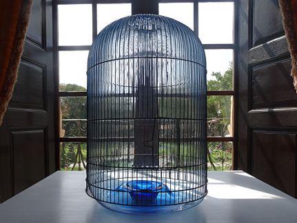 Jean-Luc Moulène, For Birds - À bruit secret, Trésors de la collection du CIRVA au Pavillon de Vendôme