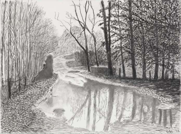 David Hockney, Woldgate, 6-7 février de la série L'Arrivée du printemps en 2013 (deux mille treize)