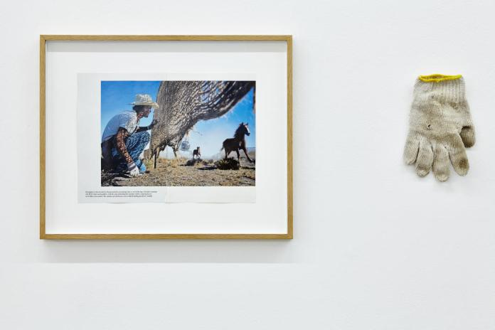 Benoît Broisat, Témoin n°1 Gant d'un Cow-Boy du Colorado, 2009. Se souvenir des Belles Choses, vue de l'exposition, Musée régional d'art contemporain, Sérignan, 2016. Photo JC Lett