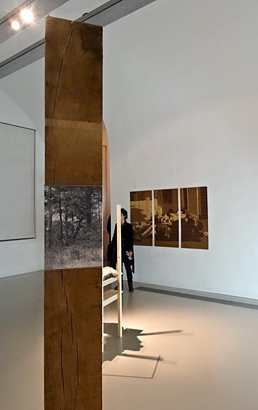 Katia Morel, Hangover tree, 2014, Pause déjeuner, 2014 - Musée Fabre, Montpellier