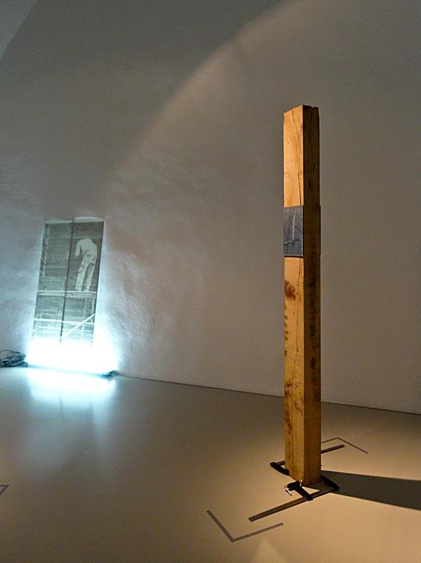 Katia Morel, Mind the gap, 2014, Hangover tree, 2014 - Musée Fabre, Montpellier