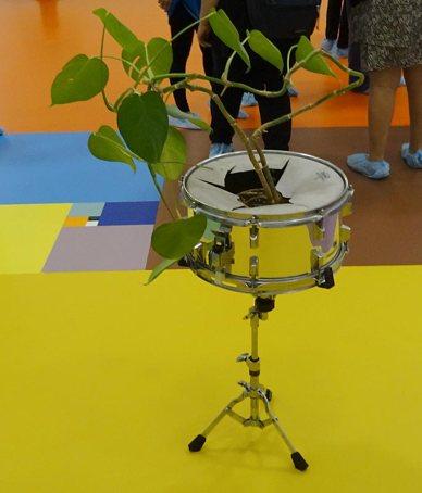 Les Possédés - Chapitre 2 - Saâdane Afif, Plus de bruit, 2003. caisse claire et plante, dimensions variables. Collection Élisabeth et André Duclos