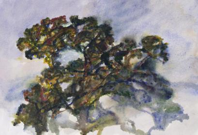 """Alexandre Hollan, """"Le Chêne dansant"""", près de Gignac, 2015 Acrylique, H.57 x L.76 cm Collection particulière Courtesy Galerie Marie Hélène de La Forest Divonne © photo Illès Sarkantyu © ADAGP Paris 2016"""
