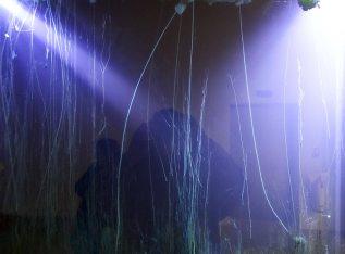 Hicham Berrada, Field, 2017 (détail). Retour sur Mulholland Drive - La Panacée Montpellier