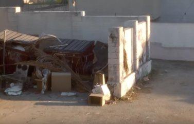 David Lynch, Mulholland Drive - L'arrière cour du Winkie's