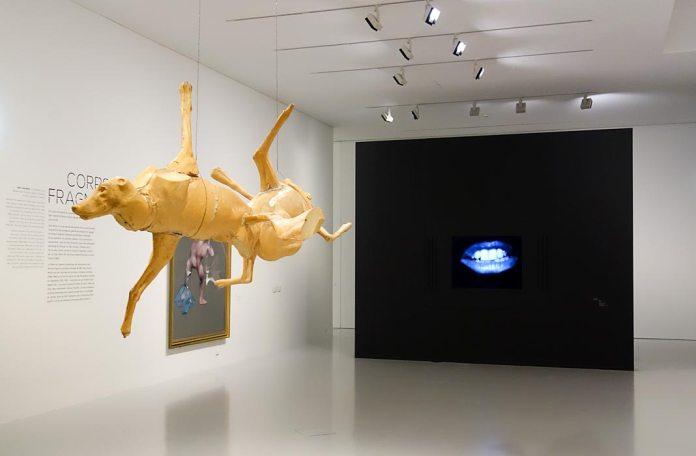 Corps - Fragment, Francis Bacon - Bruce Nauman - Face à face au Musée Fabre, Montpellier