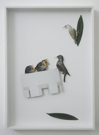 Chertlüdde, Alvaro Urbano, Utopias are for Birds (Grey-headed Woodpecker, a Startling and Swallows meet Superstudio), 2017