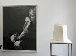 Tjeerd Alkema et Eric Manigaud - White Spirit - Galerie ALMA
