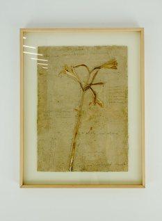 Anselm Kiefer, Regina sanctorum omnium, 1992-96. Lys et graphite sur carton