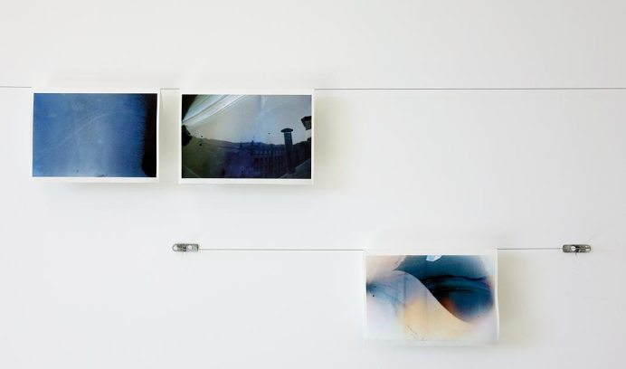 Delphine Wibaux, Solargraphes pour un printemps docile, 2014-2017
