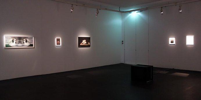 La Tempête au CRAC à Sète - Vue de l'exposition
