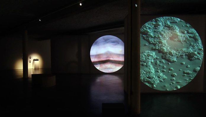 Maxime Rossi - Christmas on Earth Continued au MRAC - Vue de l'exposition