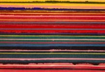 Jean Michel Meurice, Bandeau, 1974 (détail) - Parcours 1956-2018 au Musée Fabre