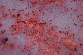 Phillip Zach, Seeing Red (detail), 2015