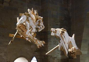 Wim Botha, A Thousand Things, Les Eclaireurs - Salle du Trésor bas, Palais des Papes