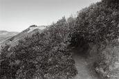 Pascal Fayeton, Chronotopie 1, 2014. Série Encres de Giens Photographie noir et blanc, 30 x 45 cm