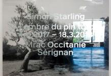 Simon Starling - A l'ombre du pin tordu - MRAC Sérigan