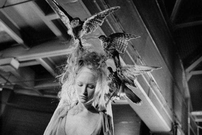 Ann Ray, Les Oiseaux, Londres, 2000 (VOSS, Jade Parfitt)