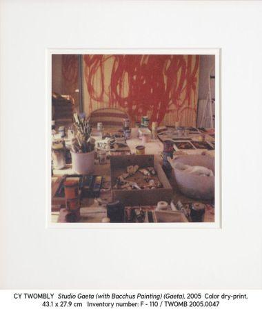 Cy Twombly, 2005.0047 Studio Gaeta (with Bacchus Painting) (Gaeta)