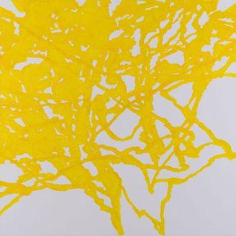 Dans l'arbre 2011, acrylique sur toile 180 x 180 cm