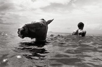 Montserrat - July 1981 © A. Summers