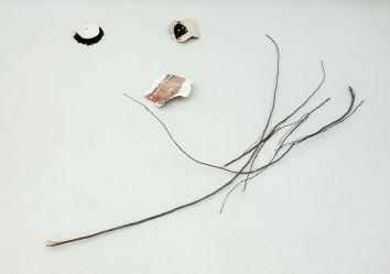 Delphine Wibaux, Témoins souples, 2014 - Rêvez 3 à la Collection Lambert