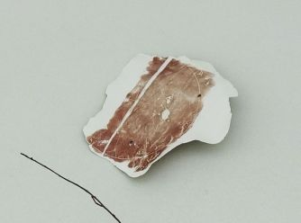 Delphine Wibaux, Témoins souples, 2014 (détail) - Rêvez 3 à la Collection Lambert